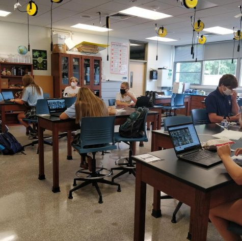 AP Biology students work diligently in class.
