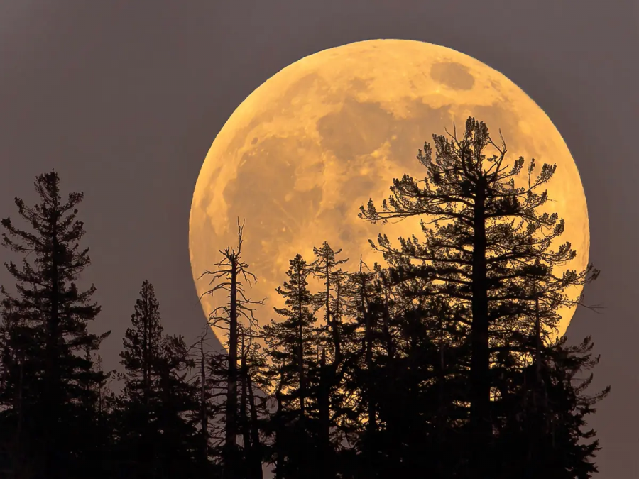 A Supermoon on May 25  and 26